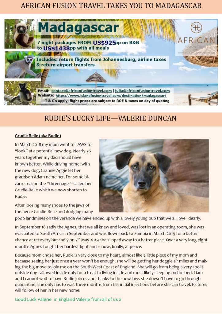 Pets Archives » Page 2 of 34 » Ad-dicts Ads! Zambia - In